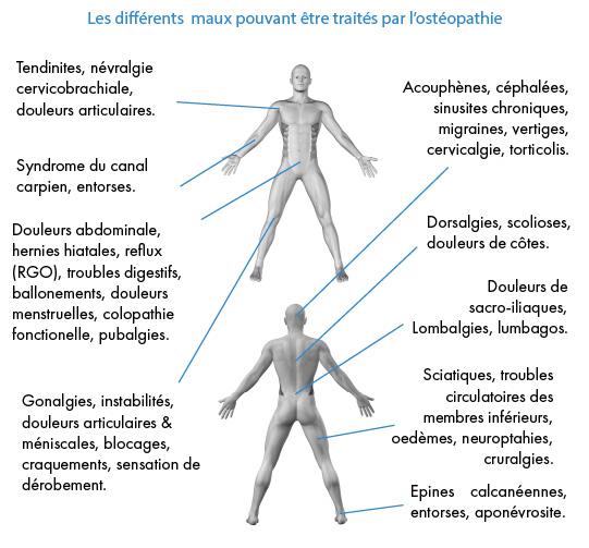 osteopathe a Avignon-osteopathie Vaucluse, osteopathe pour bebe et femme enceinte-osteopathe du sport a Avignon-osteopathie viscerale a Avignon-cabinet d'osteopathie a Avignon